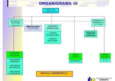 organigrama3